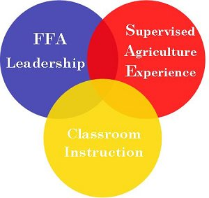 sae programs for ffa Through an sae students can deveolp education in agriculture experiences and  take what they have learned in the classroom and use it in a real life situation.