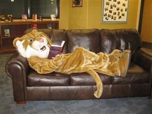 SaberCatReading