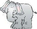 elephantcolor