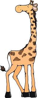 giraffecolor