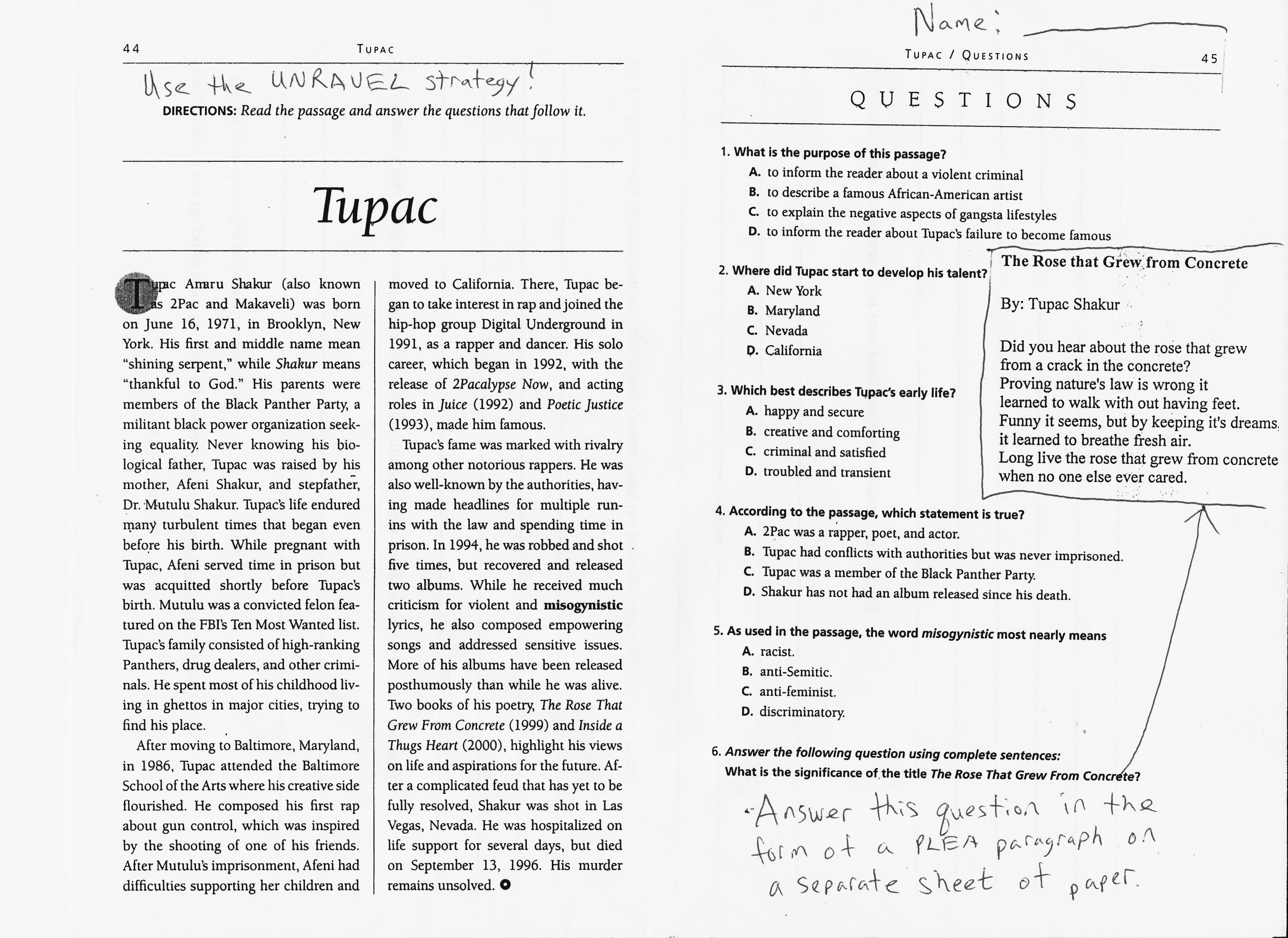 "tupac paper essay example We will write a custom essay sample on ""changes"" by tupac shakur  send you an example after 24  variety of top-notch essay and term paper samples on any ."